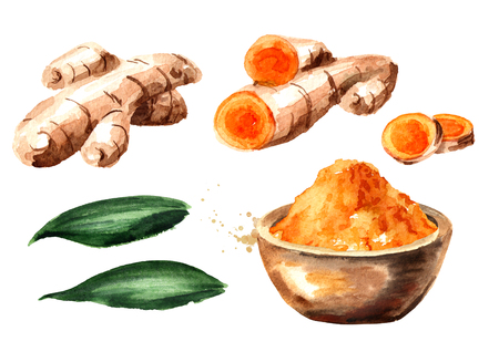 Turmeric root and powder set. Watercolor hand drawn illustration, isolated on white background