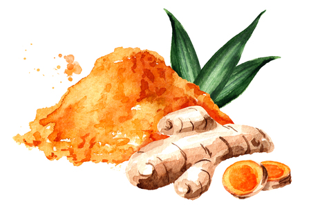 Turmeric root, green leaf and powder. Watercolor hand drawn illustration isolated on white background 免版税图像