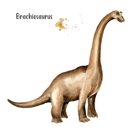 Brachiosaurus dinosaur. Watercolor hand drawn illustration, isolated on white background