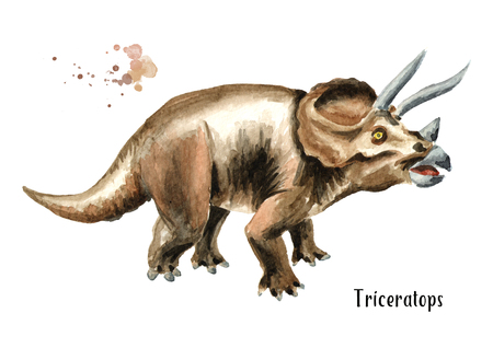 Triceratops dinosaur. Watercolor hand drawn illustration, isolated on white background