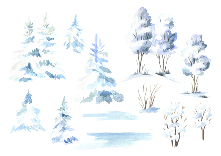 Winter  tree and fir set. Watercolor hand drawn illustration, isolated on white background