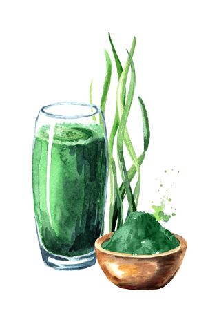 Green organic smoothie with spirulina algae with powder. Watercolor hand drawn illustration, isolated on white background