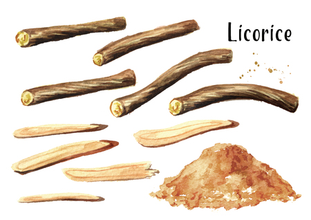 Licorice root set. Watercolor hand drawn illustration isolated on white  background