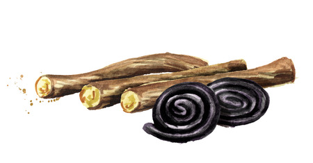 Liquorice roots with Licorice wheels candies. Watercolor hand drawn illustration isolated on white background