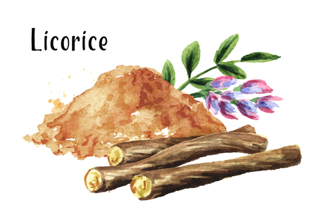 Pile of ground licorice with licorice root, flower and leaf. Watercolor hand drawn illustration isolated on white  background Stock Photo