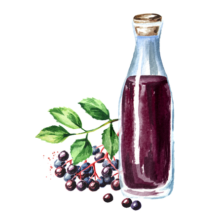 A bottle of elderberry syrup. Watercolor hand drawn illustration  isolated on white background