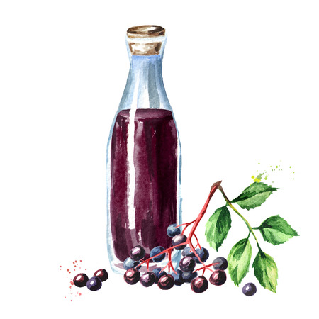 A bottle of elderberry syrup. Watercolor hand drawn illustration, isolated on white background