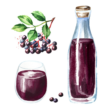 Elderberry syrup set with plant, bottle and drinking glass. Watercolor hand drawn illustration, isolated on white background