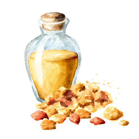 A bottle of frankincense essential oil with frankincense resin. Watercolor hand drawn illustration, isolated on white background