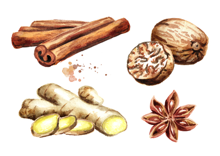 Spices set with ginger, cinnamon sticks, star anise and nutmeg. Watercolor hand drawn illustration isolated on white background Stok Fotoğraf - 110378718
