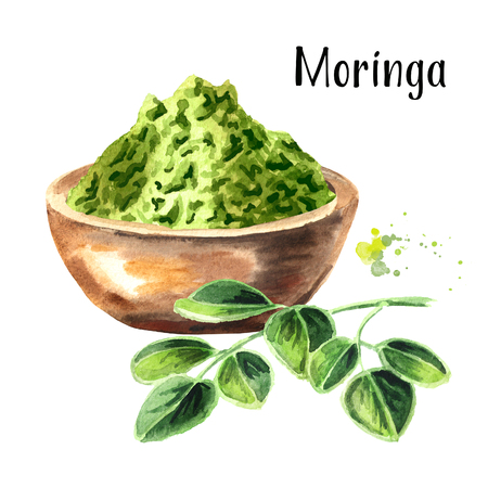Herbal Moringa leaves with powder. Superfood. Watercolor hand drawn illustration  isolated on white background Stock Photo