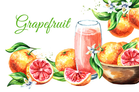 Fresh juicy grapefrui card. Watercolor hand drawn illustration, isolated on white background