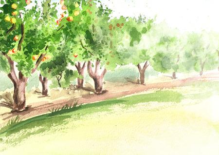Apfelgarten in der Perspektive. Handgezeichneter Aquarellhintergrund
