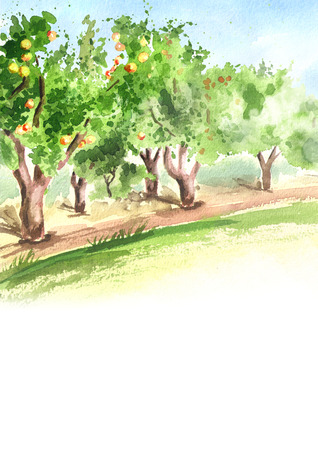 Apple garden in perspective. Hand drawn watercolor vertical background and template Stockfoto