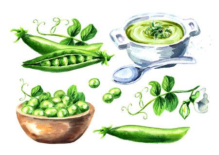 Green peas set