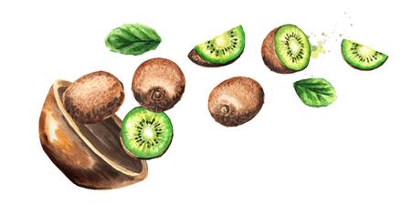 Bowl with kiwi fruits. Hand drawn horizontal watercolor illustration
