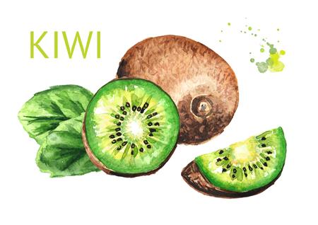 Ripe whole kiwi fruit and half and slice kiwi fruit
