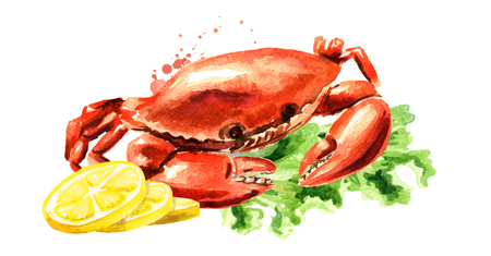 Red cooked crab with lemon, seafood, Watercolor hand drawn illustration isolated on white Фото со стока