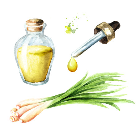 Lemongrass essential oil set. Spa concept. Watercolor hand drawn illustration, isolated on white background