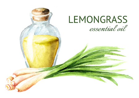 Lemongrass essential oil. Spa concept. Watercolor hand drawn illustration, isolated on white background Banque d'images