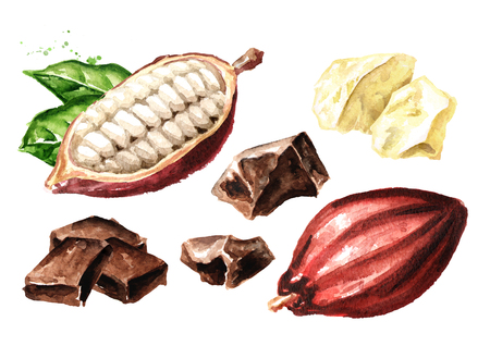 Chocolate pieces and Cocoa pods set. Superfood. Watercolor hand drawn illustration, isolated on white background Reklamní fotografie