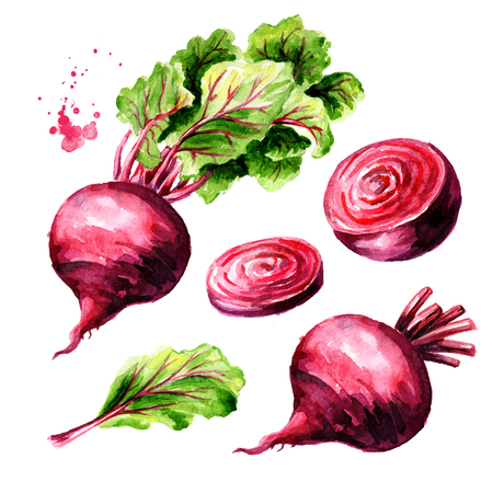 Fresh whole and half Beet root with green leaves and slice set. Watercolor hand drawn illustration  isolated on white background Stock Photo