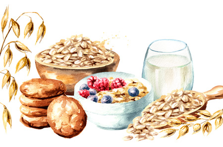 Oats Watercolor hand drawn 스톡 콘텐츠