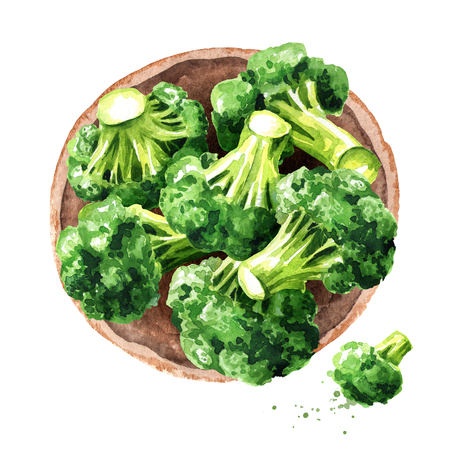 Fresh broccoli blocks top view. Hand drawn watercolor illustration, isolated on white background Stockfoto