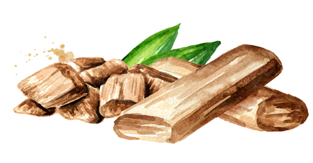 Sandalwood or Chandan Sticks and powder with green leaves. Watercolor hand drawn illustration, isolated on white background