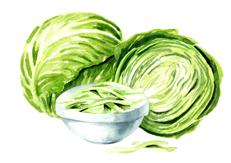 Whole and chopped cabbage.