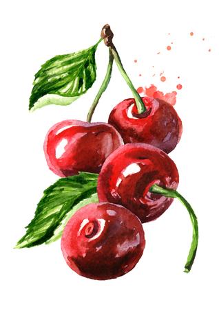 Cherry. Ripe red cherries. Watercolor hand drawn Foto de archivo
