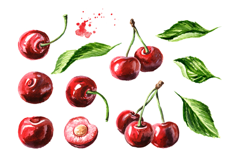 Fresh ripe cherry with leaves elements set.