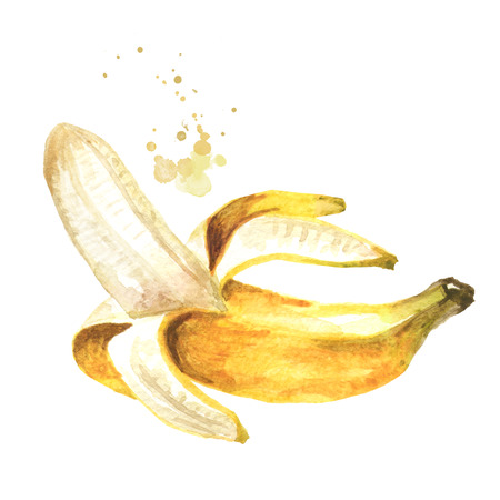 Peeled banana. Watercolor hand drawn