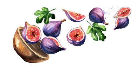 Bowl with fig fruits. Hand drawn horizontal watercolor Stockfoto