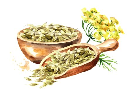 Dried fennel seeds with fennel flower. Stockfoto