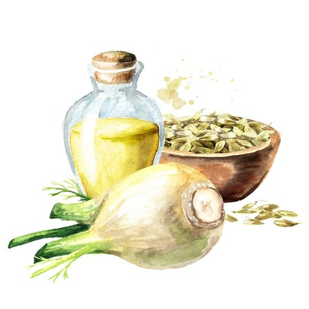 Bottle with Fennel oil, bulb, flower and seeds in the bowl.