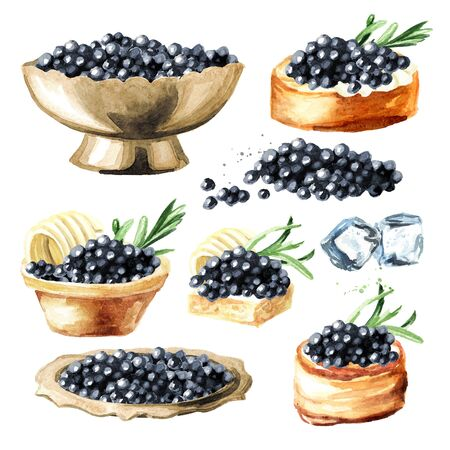Black caviar set. Watercolor hand drawn illustration isolated on white background