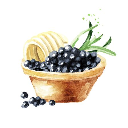 Tart with black caviar. Watercolor hand drawn illustration isolated on white background
