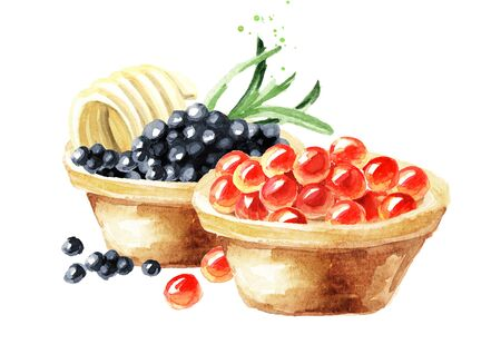 Tarts with red and black caviar. Watercolor hand drawn illustration isolated on white background