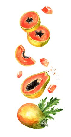 Flying papaya fruit with cubes, slices and leaves. Watercolor hand drawn illustration  isolated on white background