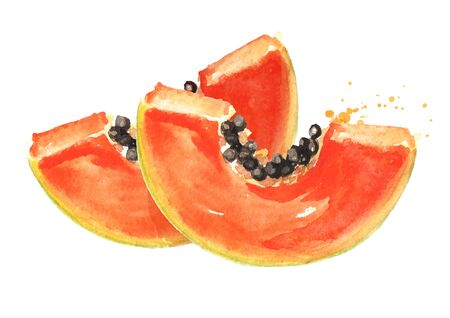 Slices of sweet ripe papaya fruit. Watercolor hand drawn illustration, isolated on white background Stock Photo