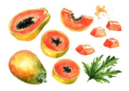Sweet ripe papaya fruit set. Graphic design elements. Watercolor hand drawn illustration, isolated on white background Stock Photo