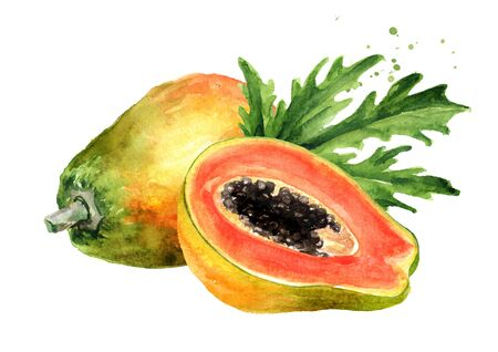Whole and half of sweet ripe papaya fruit with green leaf. Graphic design elements. Watercolor hand drawn illustration, isolated on white background Stock Photo