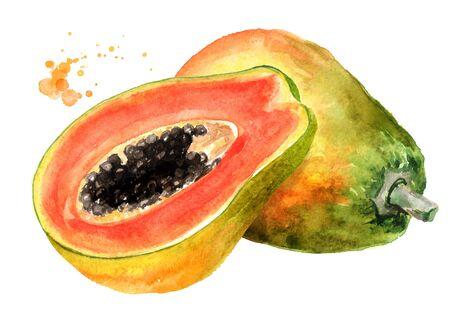 Whole and half of sweet ripe papaya fruit. Watercolor hand drawn illustration, isolated on white background Zdjęcie Seryjne