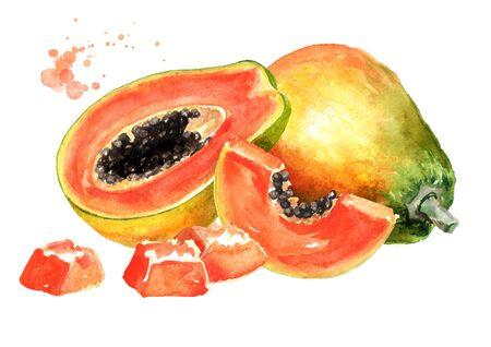 Whole, half and sliced sweet ripe papaya fruit. Watercolor hand drawn illustration isolated on white background