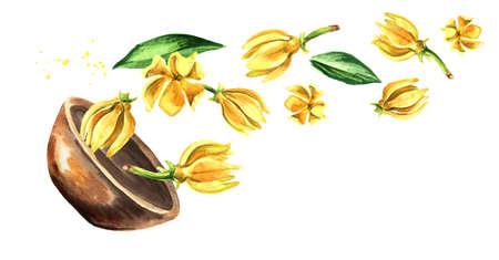 Bowl with Ylang-Ylang yellow flower.