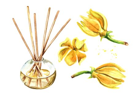 Ylang-Ylang liquid in a glass bottle with sticks and a flower. Zdjęcie Seryjne - 129844039