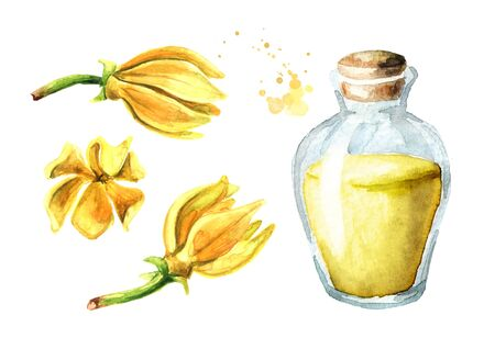 Ylang-Ylang or Cananga odroata essential oil set with flower and glass bottle.