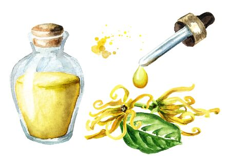 Ylang-Ylang  yellow flower or  Cananga odroata and essential oil drop and glass bottle.