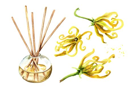 Ylang-Ylang liquid in a glass bottle with sticks and a flower.